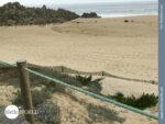 Der Weg führt immer am Strand entlang