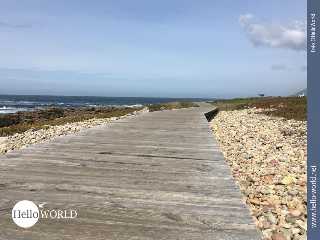 Auch in Spanien führt der Camino teils über Holzplanken