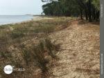 Sandige Pfade an Spaniens Küste