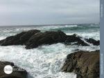 Atlantikstimmung auf dem Camino Portugues