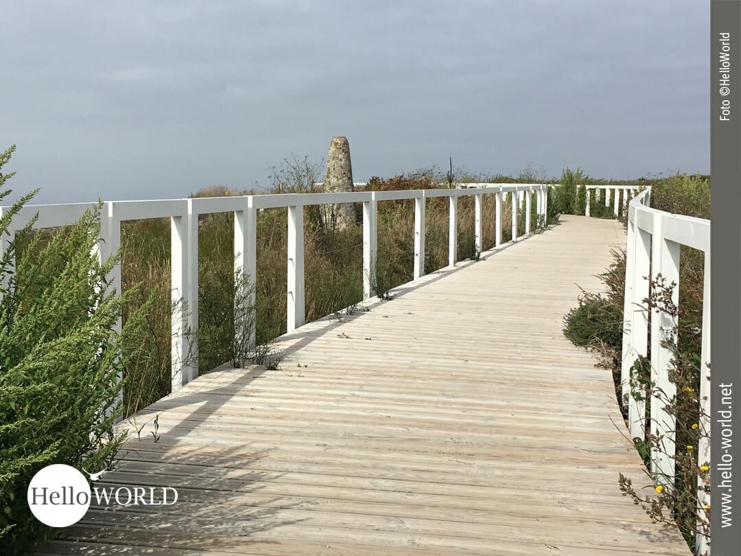 Holzplanken erleichtern den Weg