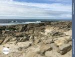 Immer an der Küste entlang