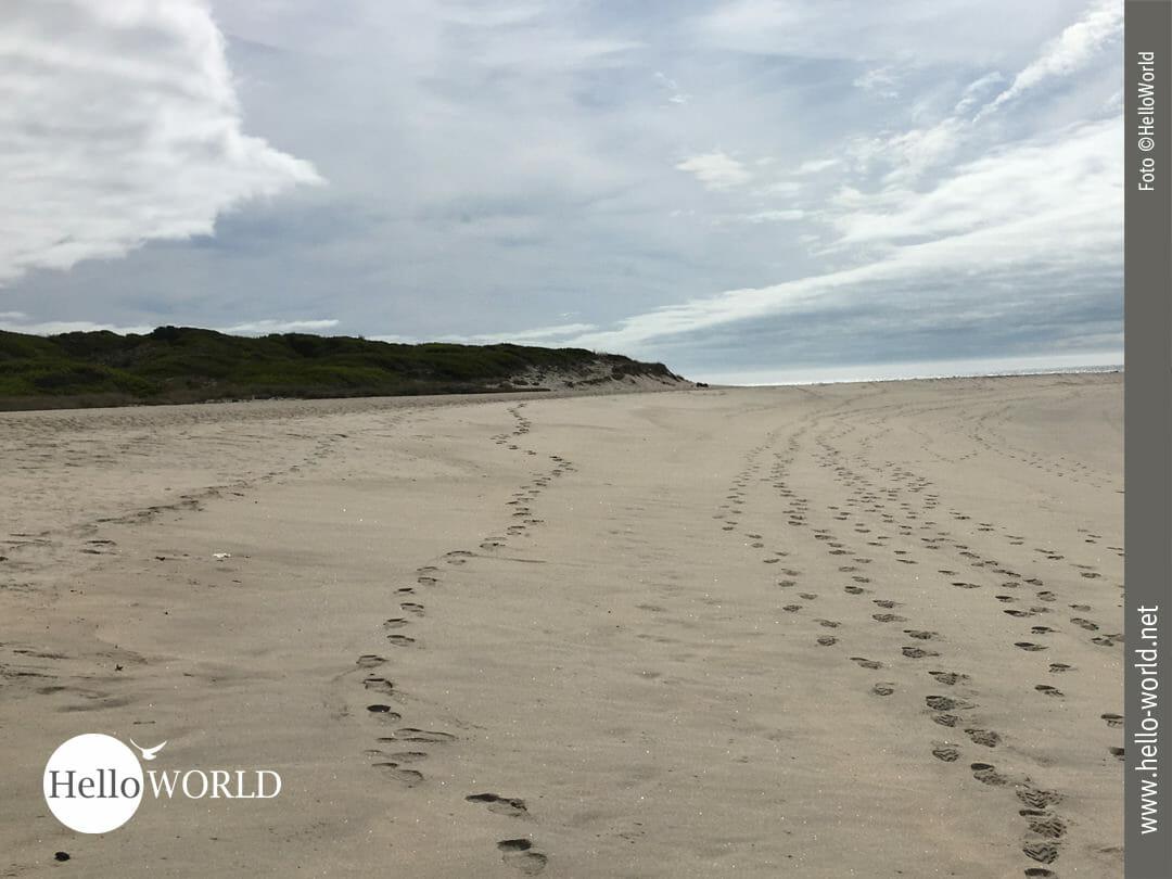 Strand und Sand - wohin man auch sieht