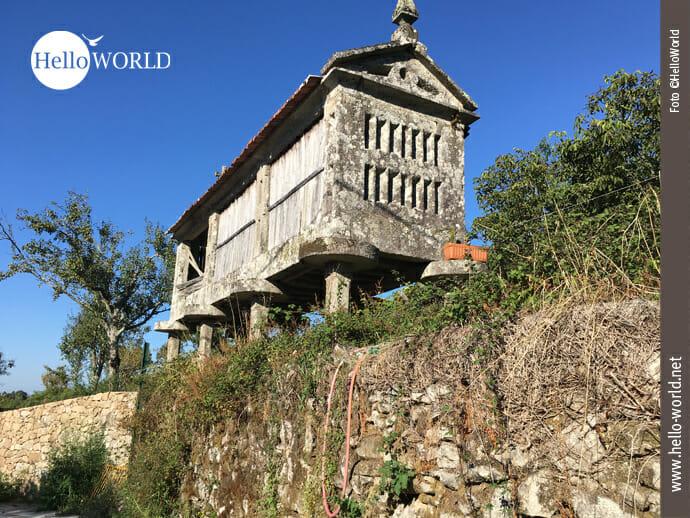 Das Bild zeigt Überreste eines noch gut erhaltenen steinernen Kornspeichers, auch Hórreo genannt, der auf Säulen am Rand des Caminho Portugues steht.