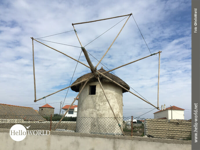 Die ländliche Seite des portugiesischen Jakobsweges