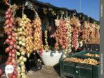 Frisch vom Feld: Gemüseverkauf auf dem Jakobsweg