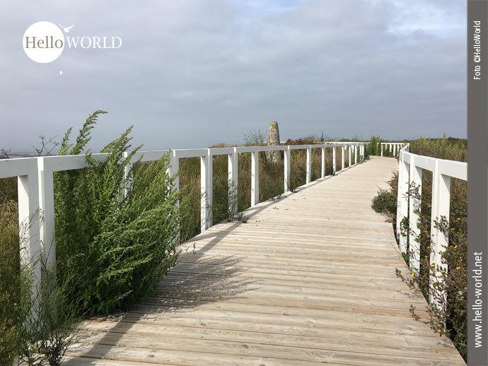 """""""Hölzerne"""" Wegstrecke auf dem Camino Portugues da Costa"""