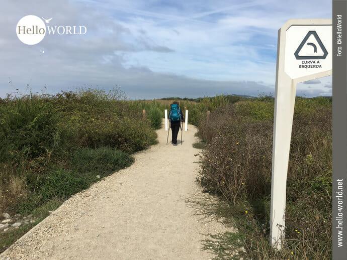 Gepflegte Wege auf dem Caminho Portugues da Costa