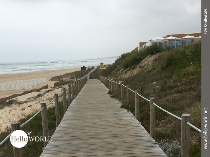 Der portugiesische Jakobsweg führt über Holzplanken