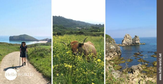 Diese drei Bilder vom Camino del Norte wurden in Asturien aufgenommen und zeigen die Vielfalt Asturiens.