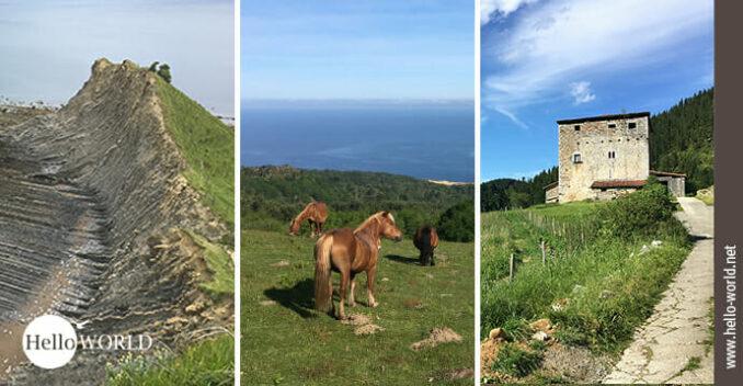 Hier sieht man Bilder vom Camino del Norte im Baskenland wie zum Beispiel Pferde auf einer Wiese.
