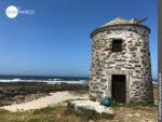 Mit dicken Mauern trotzen sie jedem Wetter: Steinmühlen an der Küste