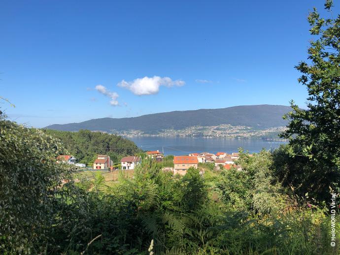 Das Foto zeigt den Blick auf die Ria de Vigo, im Vordergrund Bäume, dazwischen Wasser, dahinter hügeliges Gelände und blauer Himmel.