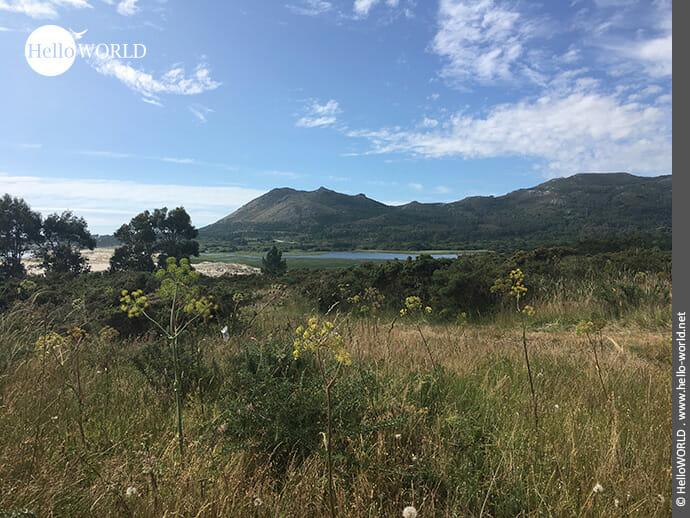 Ruheoase: Umgebung beim Camino Portugues Rundwanderweg