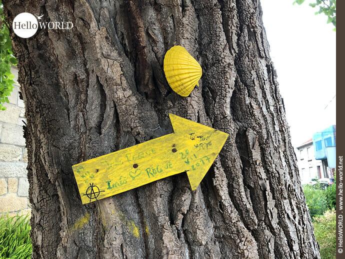 Auch ein Jakobswegzeichen auf dem Camino Portugues Rundwanderweg: gelber Pfeil