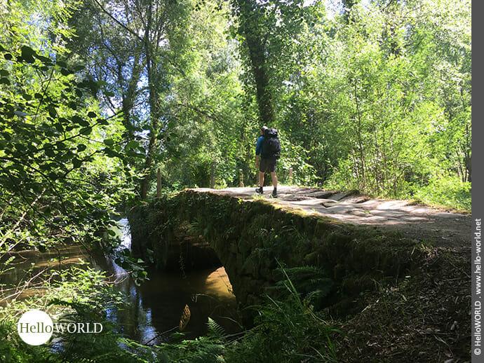 Beschaulicher Weg auf dem Camino Portugues Central