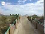 Aus Holz gebaut: Wege auf dem portugiesischen Jakobsweg