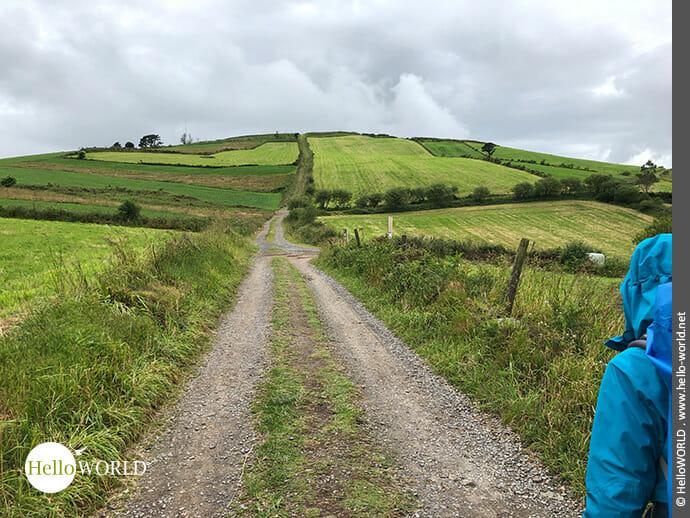 Grün-kariert: die Felder am Monte Aro