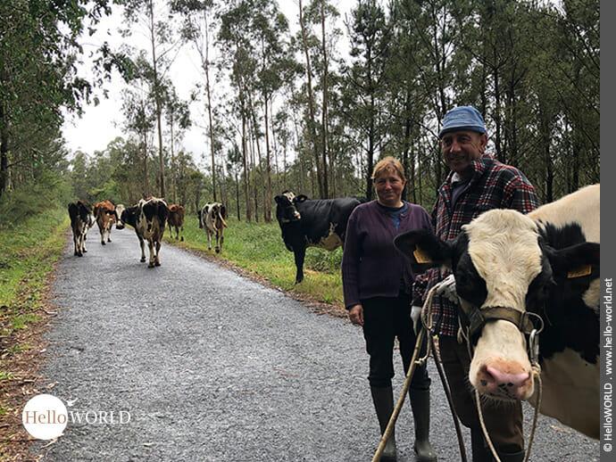 Bilder eines Landlebens am Rande des Camino Finisterre