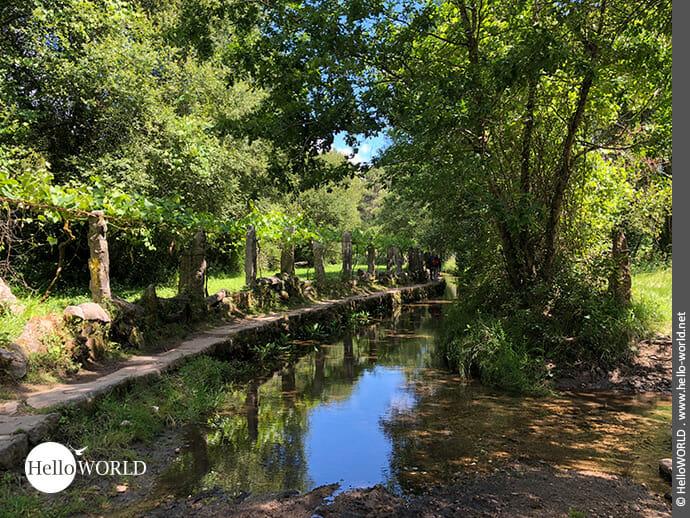 Saftiges Grün bildet die Kulisse des Camino Portugues Rundwanderwegs