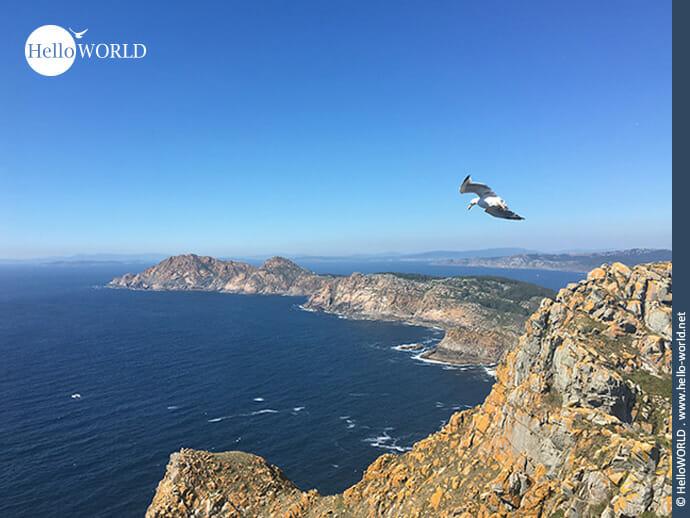 Die Cies Inseln in Galicien: Heimat unzähliger Seevögel