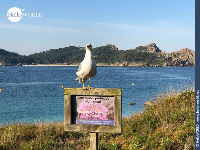Naturschutzgebiet vor Galicien