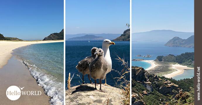 Hier sieht man drei Bilder von den Cies Inseln in Galicien, als Einstieg in die Galerieserie zum Camino Portugues Rundwanderweg.