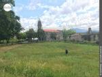 Idylle pur in der Gegend von O Campo