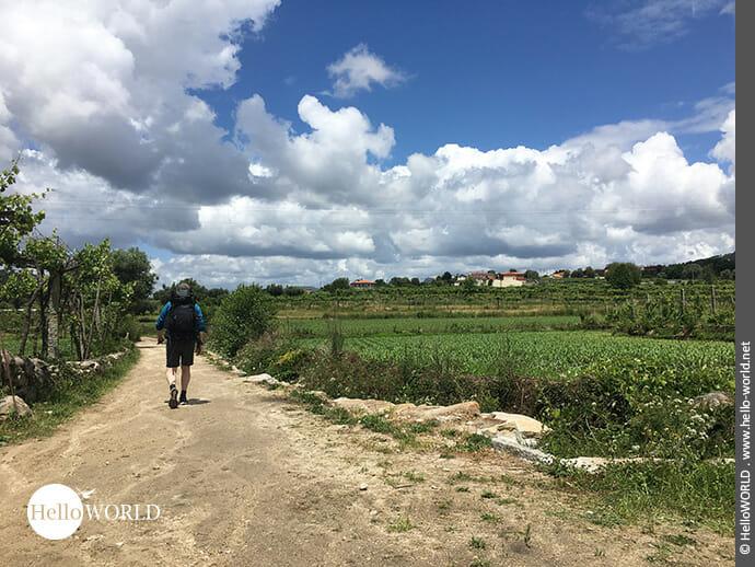 Quer durch die Landschaft auf dem Camino Portugues Rundwanderweg