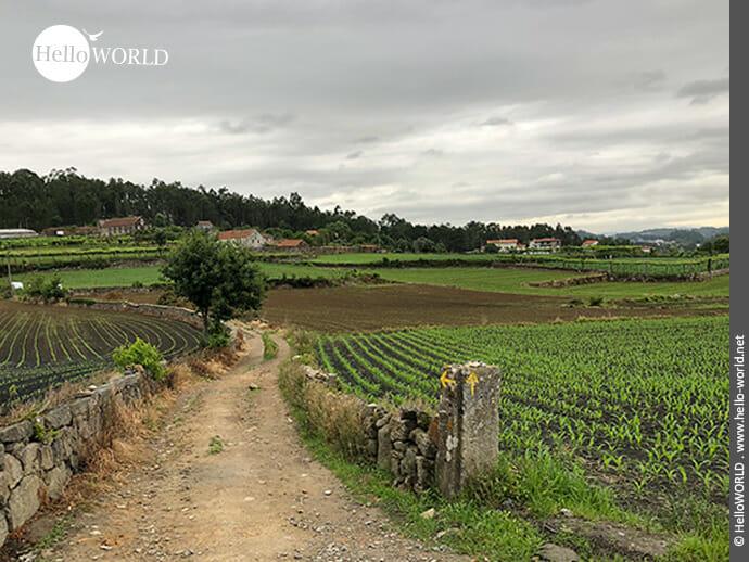 Feldwege und kleine Dörfer kennzeichnen den Weg