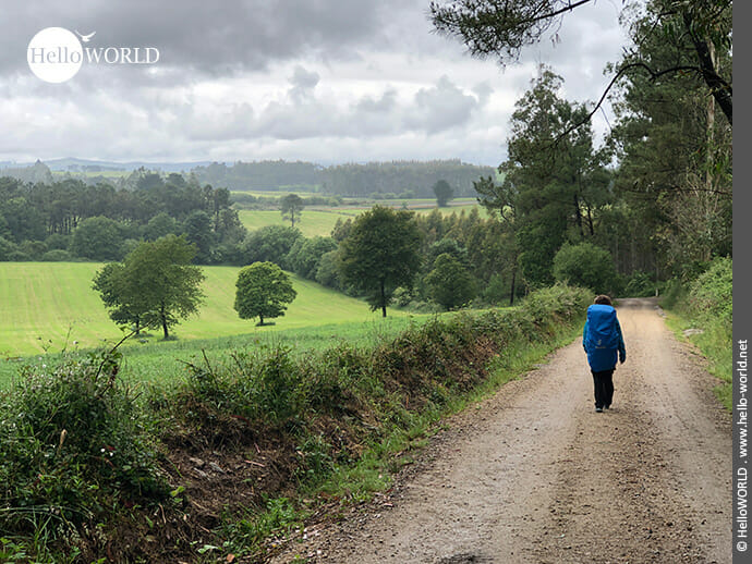 Schöne Umgebung auf dem Camino Portugues Rundwanderweg