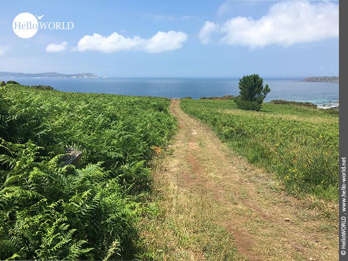 Traumhafter Küstenweg in den Rias Baixas