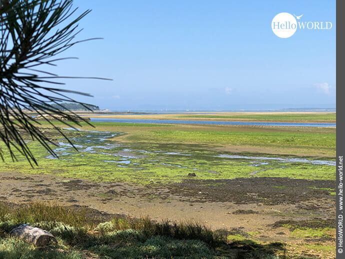 Feuchtgebiete an der Mündung des Rio Umia