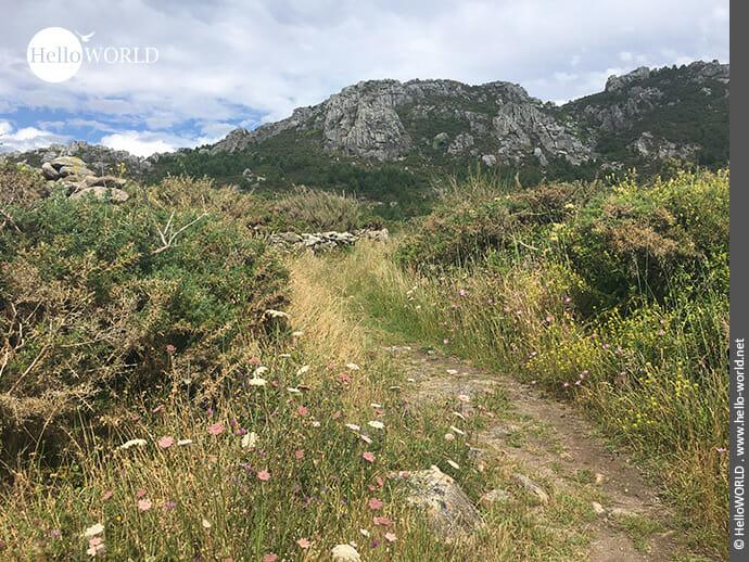 Bergige Landschaft auf dem Camino Portugues Rundwanderweg