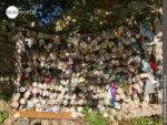 Große Muschelwand am Rande des Camino Portugues Rundwanderwegs