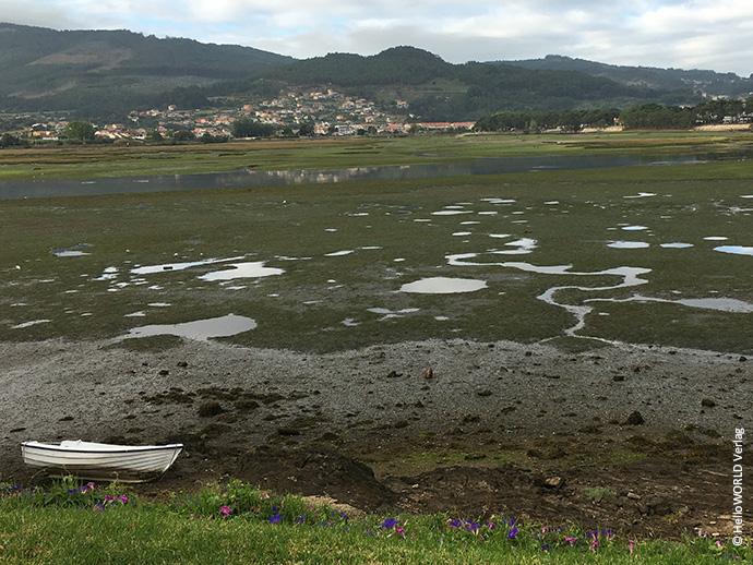 Das Bild zeigt eine Landschaftsaufnahme vom Camino Portugues.