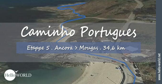 Das Bild zeigt einen Wegabschnitt aus dem Camino Portugues Video Etappe 5 von Ancora nach Mougas.