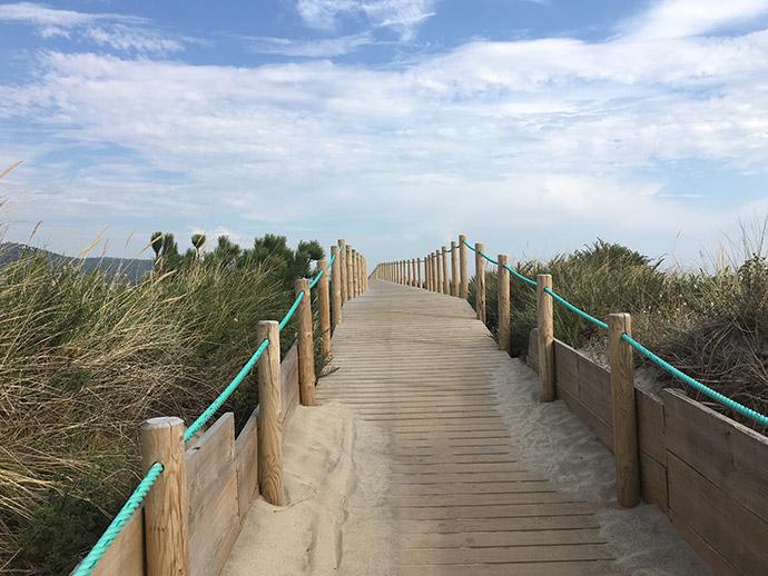 Auf diesem Bild sieht man einen Weg aus Holzbohlen, der an der portugiesischen Küste entlang führt.