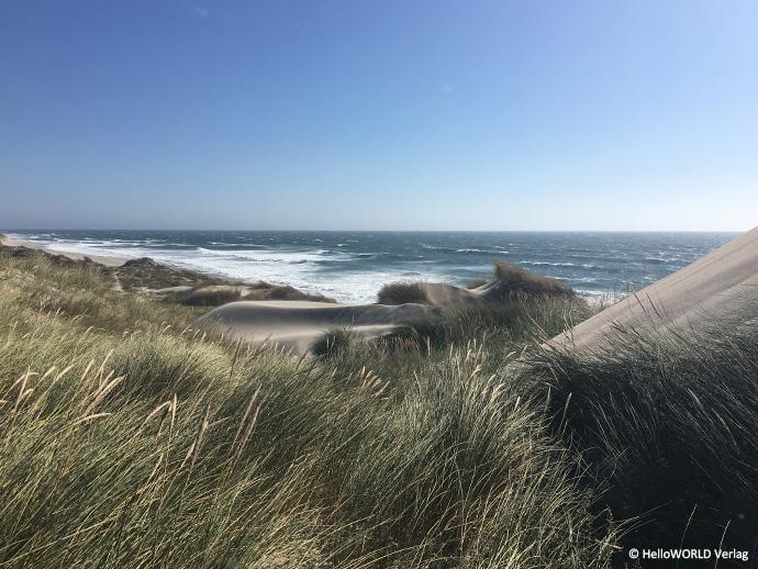 Auf dem Bild sieht man die Dünenlandschaft des Praia do Rodanho, die man nur auf dem Camino Portugues Küstenweg (Senda Litoral) bewundern kann.