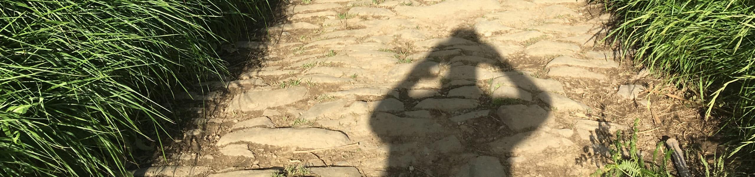 Dieses Einstiegsbild der HelloWorld-Kategorie Galerie zeigt den Schatten von einem Mann, der fotografiert, vor ihm große Pflastersteine, gesäumt von grünem Gras.