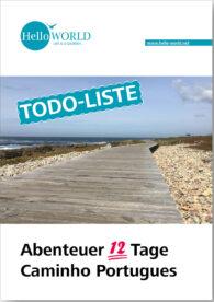 Dieses Cover Bild zeigt die Holzbohlen die entlang der Küste des Camino Portugues führen