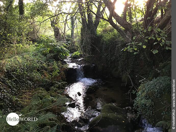 Der Rego do Armenteira zieht sich rund sieben Kilometer bis ins Tal.