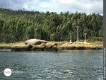 Legendenhaft: drei von 17 Kreuzen entlang des Rio Ulla