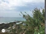 Camino Portugues Küstenweg: Immer den Atlantik vor Augen