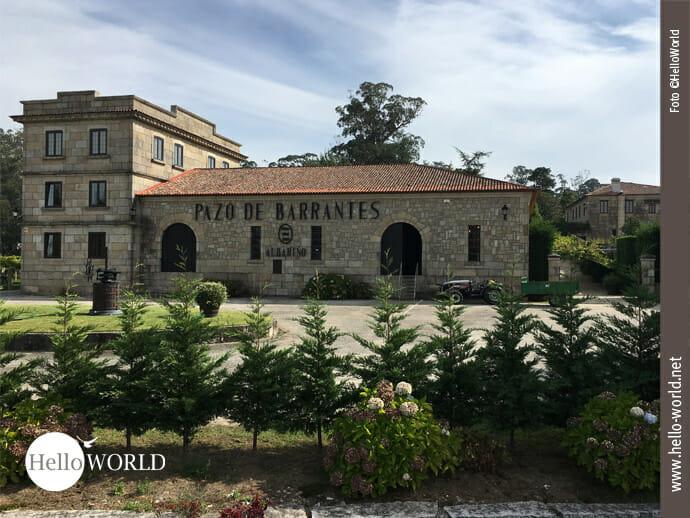 """Dieses Bild von der zehnten Caminho Portugues Etappe zeigt das Gebäude des Weingutes """"Pazo de Barrantes"""" mit seinem großen Vorplatz, umzäumt von Tannen und Hortensien."""