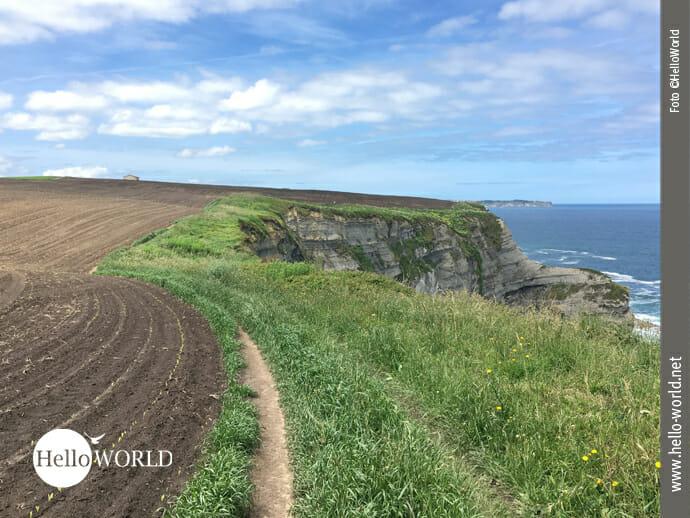 Unterwegs zwischen Feldrand und Atlantik