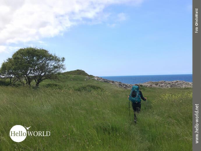 Quer über die Wiese auf dem spanischen Küstenweg
