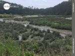 Ausblick an der Ria de Foz