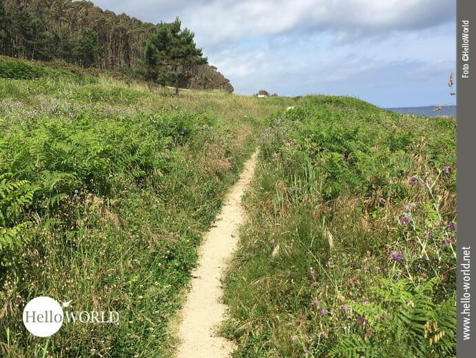 Wegebeispiel Richtung Celeiro
