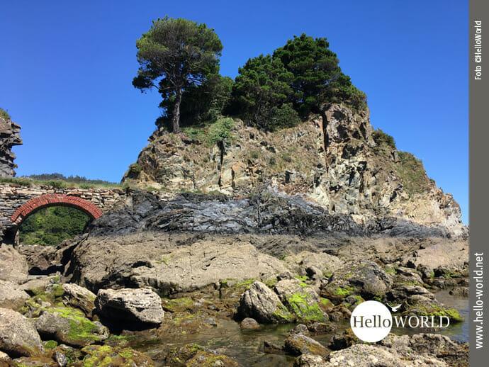 Das Bild von der spanischen Nordküste zeigt eine Felsformation mit Bäumen am Playa de Covas bei Viveiro bei blauem Himmel